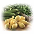 Green Beans, Zucchini, or Yellow Squash
