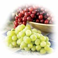 Red or White Seedless Grapes