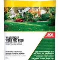 Ace winterizer Weed and Feed
