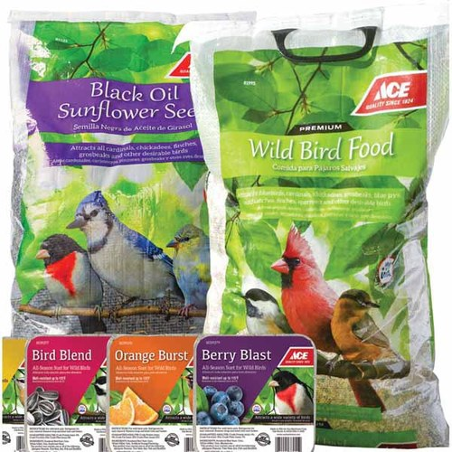 Ace 20 Lb. Black Oil Sunflower Seed or 40 Lb. Wild Bird Food